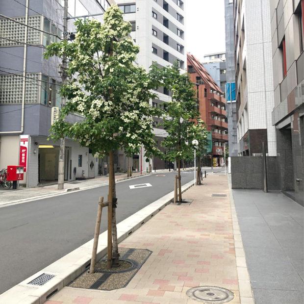 千代田区内道路