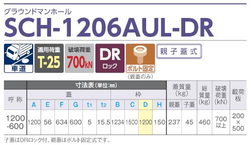 SCH-1206AUL-DR / グラウンドマンホール