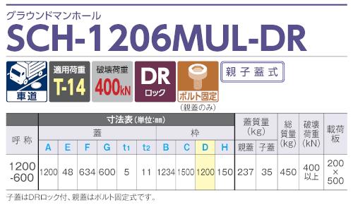 SCH-1206MUL-DR / グラウンドマンホール